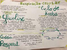 Mapa Mental RESPIRAÇÃO CELULAR. Biologia Study Biology, Mental Map, Study Inspiration, School Hacks, Student Life, Study Tips, Medicine, Journal, Lettering