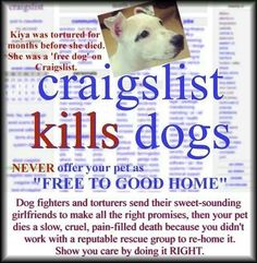 1000+ images about craigslist horrors on Pinterest | Pets, Medical ...