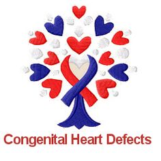 An Online Magazine Just For Con Heart Defects Heck Yeah Defect