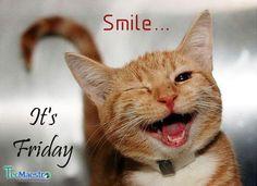 Yeah… Finally… The weekend is here! #Weekend #Fridayfun #officefun