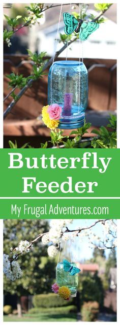DIY Butterfly Feeder.  Fun garden project with the kids!