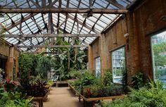 hivernacle garden shop greenhouse barcelona spain via Gardenista