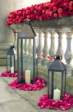 lanterns and roses and rose petals