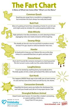 The Fart Chart an Illustrated Guide to Some Different Types of Farts