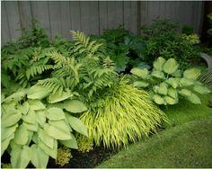 traditional landscape by Glenna Partridge Garden Design--- Layer on texture for a lush garden look. Plants, Woodland Garden, Shade Garden, Lush Garden, Outdoor Gardens, Easy Plants, Garden Inspiration, Garden Planning, Shade Garden Design