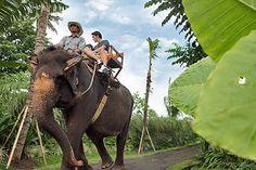 Cheap Bali Tour Package