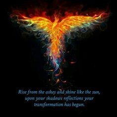 Rise from the ashes and shine like the sun, upon your shadows reflections your transformation has begun