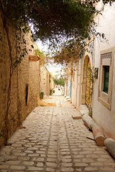 Street scene in the medina of Sousse, Tunisia (by muffinn).