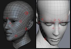 Modeling guide: realistic human head | Thunder Cloud Studio