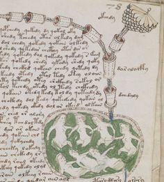 The Voynich Manuscript : No one alive has the ability to decipher the huge amount of information contained in this 600+ year old book. What secrets does it hold locked in its text? It remains one of the oldest mysteries of modern history. Experts are in total disagreement about its origin and meaning, and thus, it will hold its place in the Yale Museum, as The Book That Shouldn't Exist.