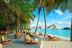 Hotel Deal Checker - The Sun Siyam Iru Fushi Maldives Christmas Holiday Destinations, Top Honeymoon Destinations, Honeymoon Ideas, Maldives Holidays, Island Beach, Travel Memories, Travel Images, Resort Spa, Hotels And Resorts