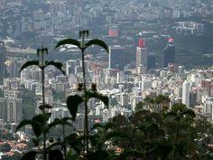 Caracas vista desde el Ávila. #Venezuela