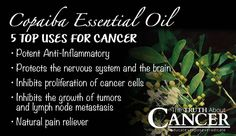 The Best Anti-Cancer Essential Oil You've Never Heard Of?