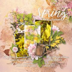 digital scrapbooking Bloom my World (collection) by Simplette is a digiscrap collection about sping and gardening with touches of yellow and copper to bright your daily photographies All Paper, My World, Digital Scrapbooking, Bloom, Flowers, Cards, Collection, Shop, Design