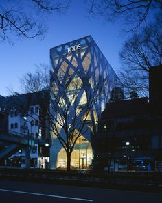 """""""Tod's Omotesando"""": Echoing the famous tree-lined street below, this Tod's store in Tokyo is wrapped in a skin of criss-crossed concrete """"branches"""" 
