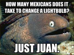 bad joke eel. his jokes are bad.