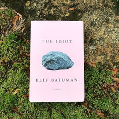Id heard an interview with Elif Batuman and knew I had to read her book. I started THE IDIOT and couldnt stop reading. By some literary wizardry not a lot happens in THE IDIOT while simultaneously EVERYTHING happens. Selin starts her freshman year at Harvard right around the time everyone got email in the 90s. We learn about the classes she takes the food she eats her roommates weird sleeping arrangementseverything. Nothing exciting happens exactly but I felt enthralled with the everyday…