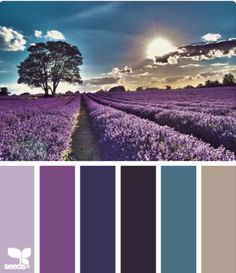lavender setting color palette from Design Seeds Colour Pallette, Color Palate, Colour Schemes, Color Combos, Color Patterns, Purple Palette, Lavender Color Scheme, Paint Combinations, Purple Color Palettes