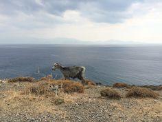Therma, Kos, Greece