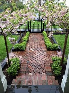45 Cute Front Yard Courtyard Landscaping Ideas Front yard landscape design is an essential part of creating an overall outdoor plan that truly showcases the elegance of […] Landscaping Along Fence, Courtyard Landscaping, Landscaping Ideas, Outdoor Landscaping, Landscaping Shrubs, Mailbox Landscaping, Landscaping Melbourne, Xeriscape Plants, Front Yard Flowers