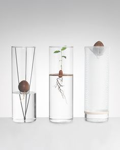 Floating Forest by Michael Anastassiades DIY book by Phaidon