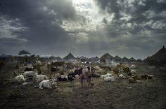 PHOTOS. Le concours du meilleur photographe d'environnement de l'année, pour inciter à protéger notre planète http://huff.to/1Lw5cSr via @LeHuffPost