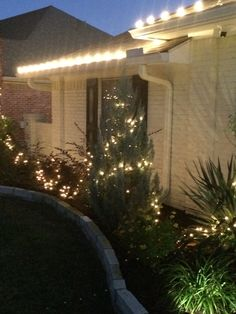 A couple more strands of lights are needed.