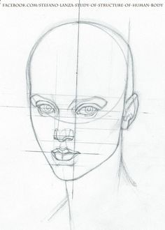 www.facebook.com/... #anatomy #head #drawing #draw #pencil