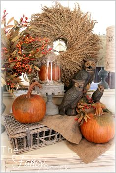 The Fancy Shack - Fall decor - pumpkin display