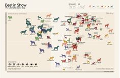 The World's Best Dogs, According To Math London-based data journalist and designer David McCandless has created some of the most thought-provoking data visualizations of the past decade. With this infographic, he turns his hand to a more lighthearted topic: What dog breed is quantitatively the best? Dog breeds are rated by beneficial traits (intelligence, longevity, lack of genetic ailments) and negative ones (cost, grooming, size of appetite).