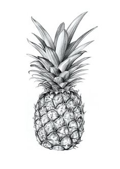 #pineapple #drawing #art