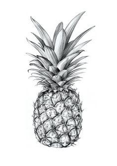 #pineapple #drawing #art