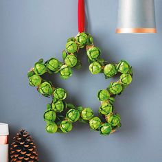 What could be more Christmassy than a brussel sprout garland? Star Brussel Sprout Wreath - home accessories Christmas Gift Decorations, Great Christmas Gifts, Christmas Music, Christmas 2014, Christmas Crafts, Christmas Door, Christmas Flowers, Christmas Makes, Christmas Websites