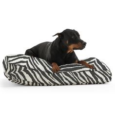 The Extra small DogSack Rectangle Memory Foam Black/ White Zebra Stripe Twill Pet Bed >>> Click on the image for additional details. (This is an affiliate link and I receive a commission for the sales)