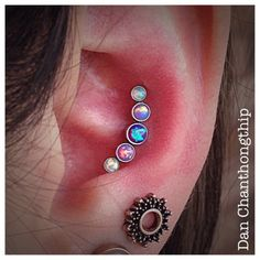 anatometal cluster - Google Search Helix Piercing Jewelry, Conch Jewelry, Ear Piercings Helix, Helix Ear, Conch Earring, Cute Ear Piercings, Piercing Tattoo, Cartilage Earrings, Body Jewelry