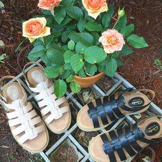 Lydie Kona by Clarks #shoes #fashion #summer #nature #flower #brooklyn #nyc #eslavidany