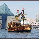 """Trip Advisor's """"Things to do in Baltimore,"""" Maryland, USA."""