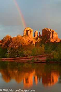 Famous Cathedral Rock in Sedona, Arizona glows in the sunlight as you walk along Oak Creek.