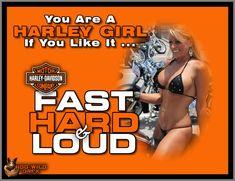 Harley Davidson Images, Harley Davidson T Shirts, Harley Davidson Motorcycles, Lady Biker, Biker Girl, Biker Quotes, Biker Sayings, Motorcycle Logo, Motorcycle Rides