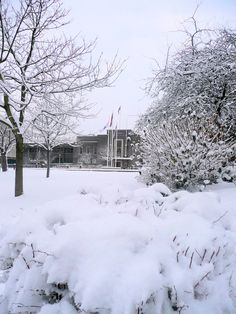 Romford Town Hall Seen From Main Road... I miss winter so much, and a rel spring and fall !!!!