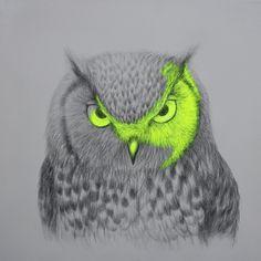 "Saatchi Online Artist: Louise McNaught; Pencil, 2012, Drawing ""Large, wild eyes"""