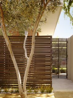 """An office building in Palo Alto needed moderate privacy for meetings and office gatherings in an outdoor courtyard. Landscape architect Scott Lewis designed a custom woven steel screen, painted chocolate brown, and planted native California rush in front. He applied a similar solution to the gate at right: """"The woven steel screen and the flat-bar pedestrian gate use the same standard size of steel strap, but contrast in their spacing and pattern."""""""