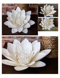 Waterlily paper flower (photo only)Discover thousands of images about Waterlily paper flowerPaper Flower Backdrop - Ash and Crafts Large Paper Flowers, Tissue Paper Flowers, Paper Flower Backdrop, Giant Paper Flowers, Felt Flowers, Diy Flowers, Fabric Flowers, Paper Lotus, Diy Fleur