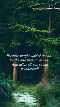 Because maybe you're gonna be the one that saves me and after all you're my wonderwall - Oasis #wonderwall #oasis #forest #green