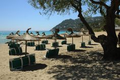 Canyamel Mallorca Beaches, Travel, Places, Viajes, Destinations, Traveling, Trips