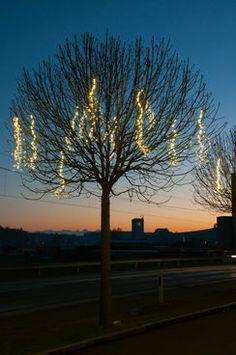 Epic Fascinating Lights LED Angel Hair Lichterkette Beleuchtung Licht Draussen Outdoor