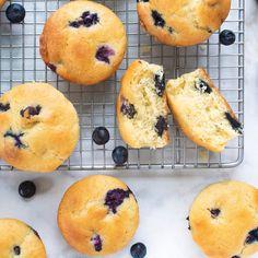 Blueberry Cream Muffins Blueberry Rhubarb, Blueberry Recipes, Blueberry Bread, Blueberry Biscuits, Blackberry, Yogurt Muffins, Breakfast Muffins, Breakfast Ideas, Breakfast Recipes