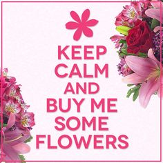 And Lily Bouquet Yes! Keep Calm and Buy Me Some FlowersYes! Keep Calm and Buy Me Some Flowers Flower Puns, My Flower, Lyric Quotes, Funny Quotes, Keep Calm Wallpaper, Floral Quotes, General Quotes, Everyday Quotes, Valentines Flowers