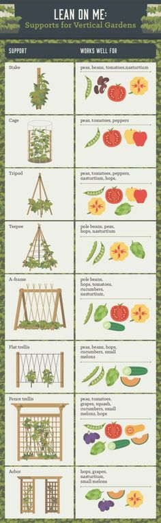 This colorful chart by CustomMade breaks down the different types of structures (and what fruits and veggies go with each) that you can add to your backyard. Click through for more Pinterest gardening charts.