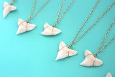 Hey, I found this really awesome Etsy listing at https://www.etsy.com/listing/111513127/genuine-shark-tooth-necklace-gold-shark